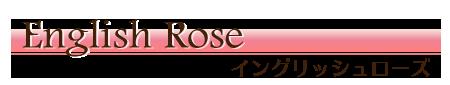 リングピロー専門店ルシエルブリレ 洋風リングピロー / 完成品 一覧 「イングリッシュローズ」