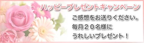 リングピロー専門店ルシエルブリレ「ハッピープレゼントキャンペーン」ご感想をお送りください。毎月20名様にうれしいプレゼント!